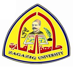 Zagazig University participates in the forty one tournament of the martyr El-Refaay during April and May 2014