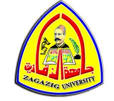 د.أشرف الشيحي رئيس جامعة الزقازيق يهنئ د.حسن حماد  لحصوله علي جائزة الدولة